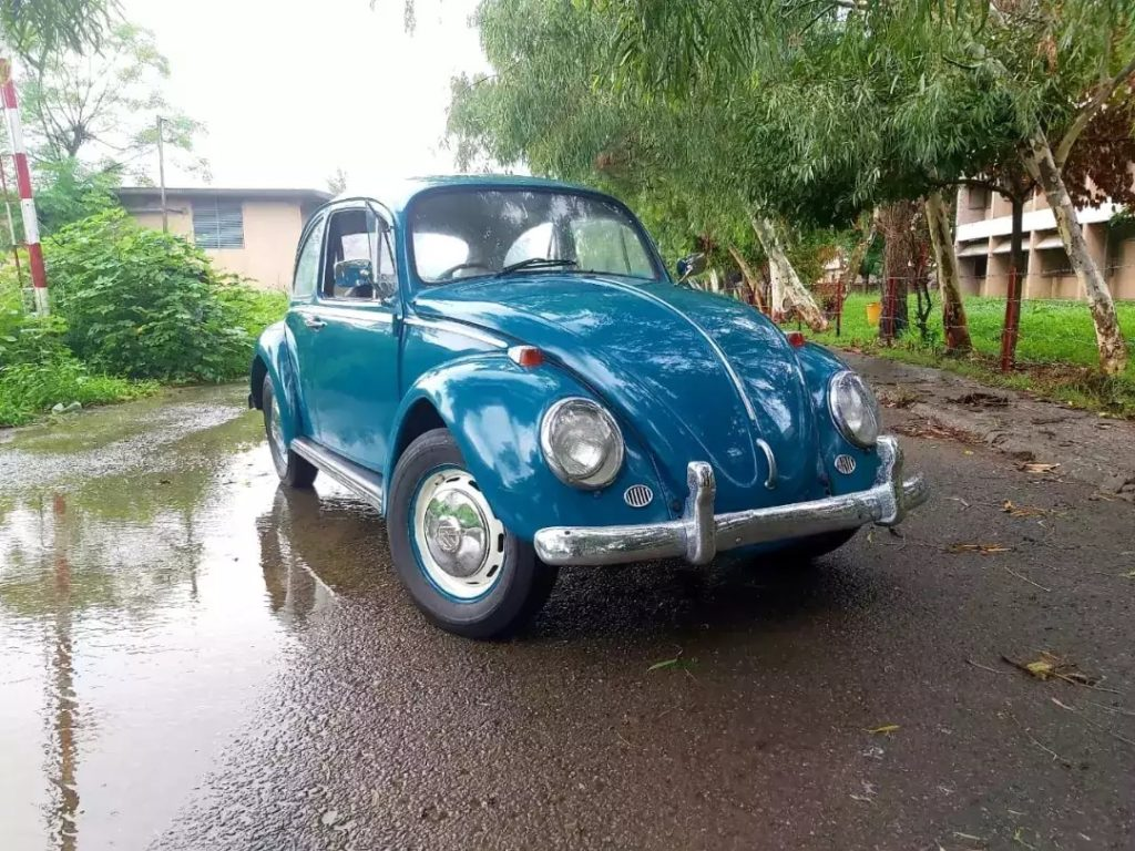 Volkswagen Beetle 1965 - Vintage Car